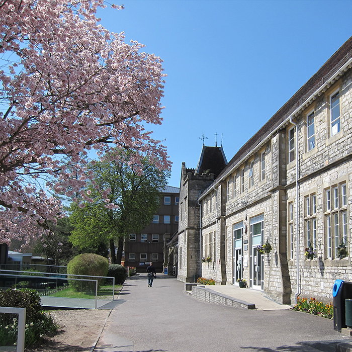 View of Victorian stone building with path running by it and a pink cherry tree in blossom against a blue sky