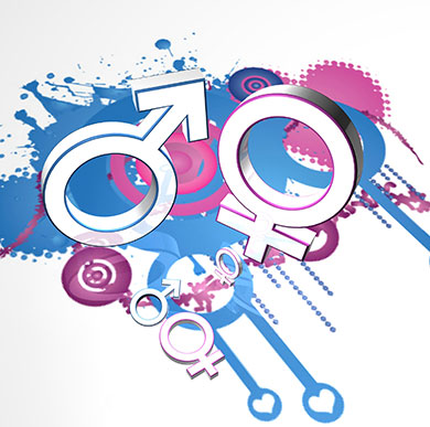 Centre for Gender Studies image